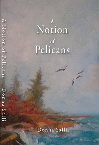 A Notion of Pelicans - Coming September 2016!