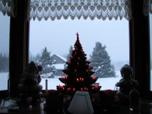 Light in the Dark Season - The Bay Window at Our Family Farm